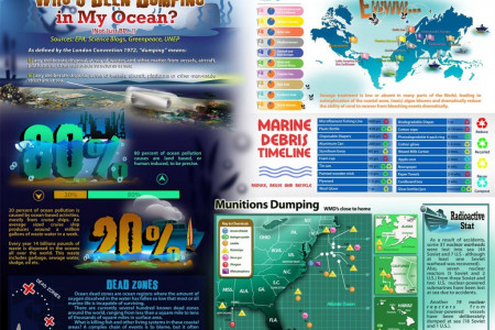 Who's Been Dumping In My Ocean? Infographic