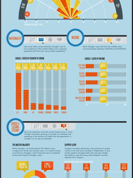 Who's Using Google+ Infographic