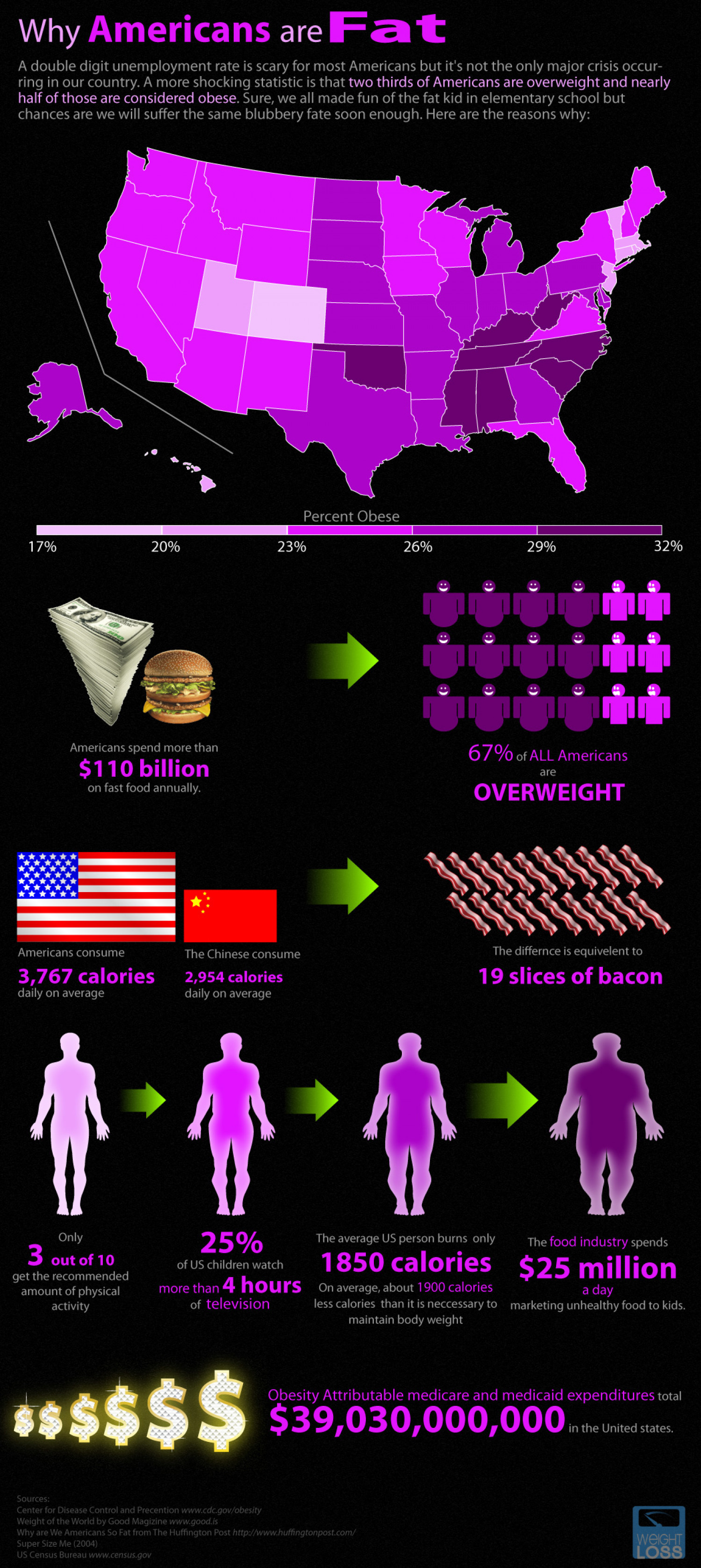 Why Americans Are Fat Infographic