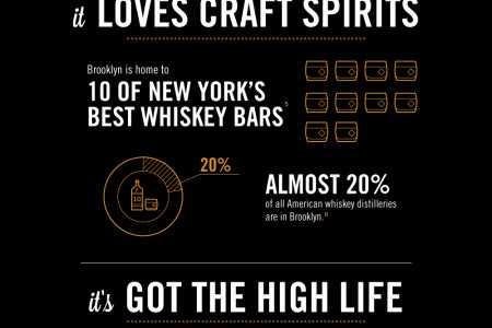 Why Brooklyn? Infographic
