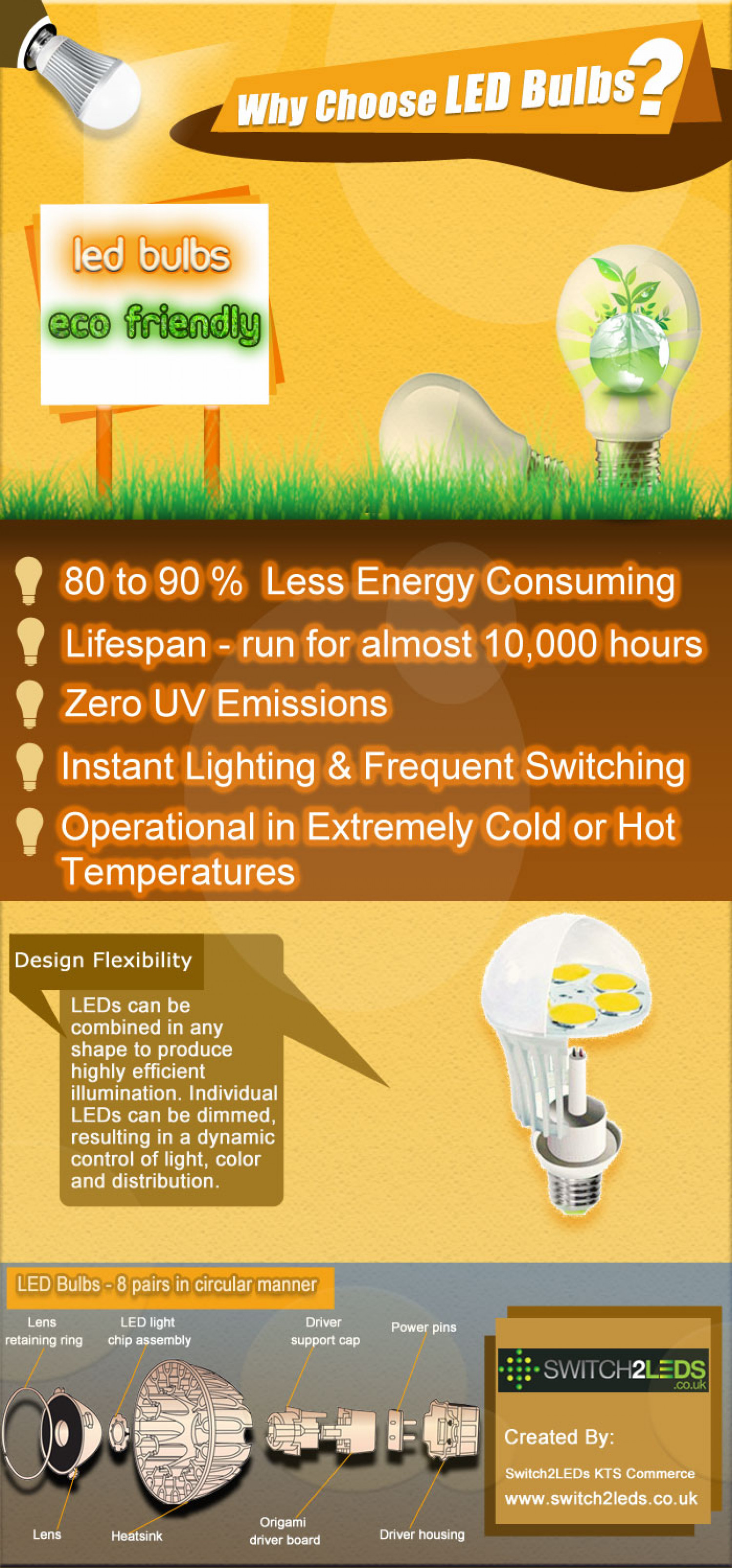 Why Choose LED Bulbs? Infographic