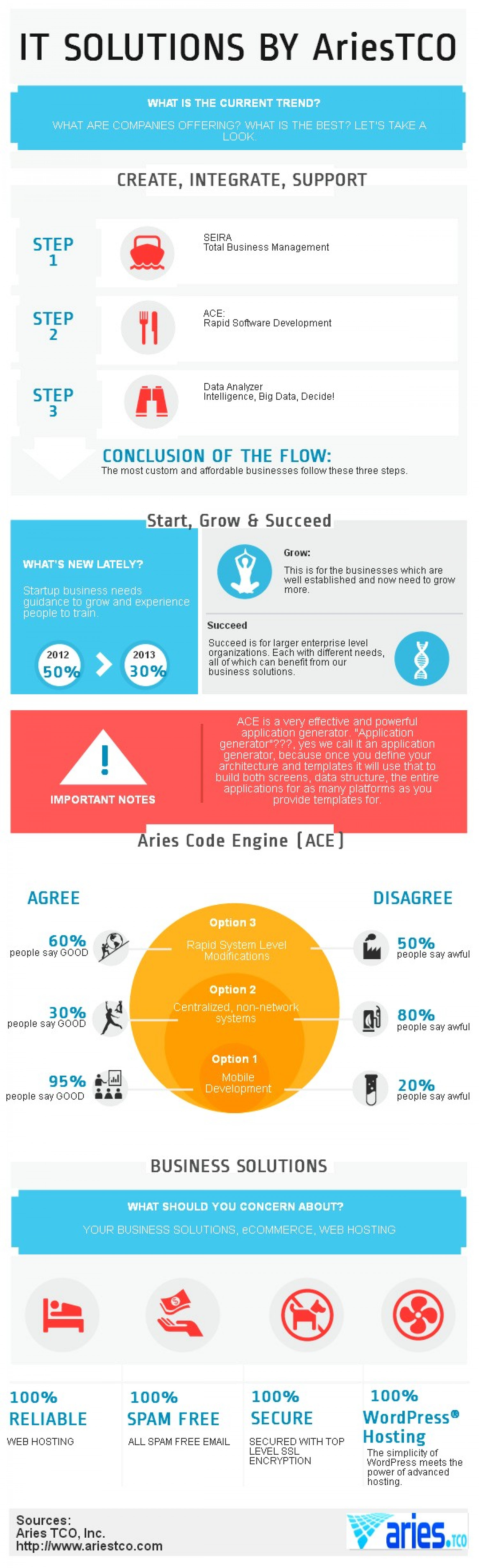 IT Solutions By AriesTCO Infographic