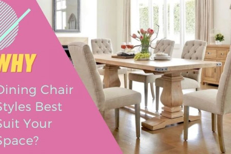 Why Dining Chair Styles Best Suit Your Space? Infographic