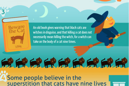 Why do cats have 9 lives Infographic