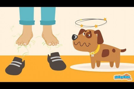 Why do feet smell?  Infographic