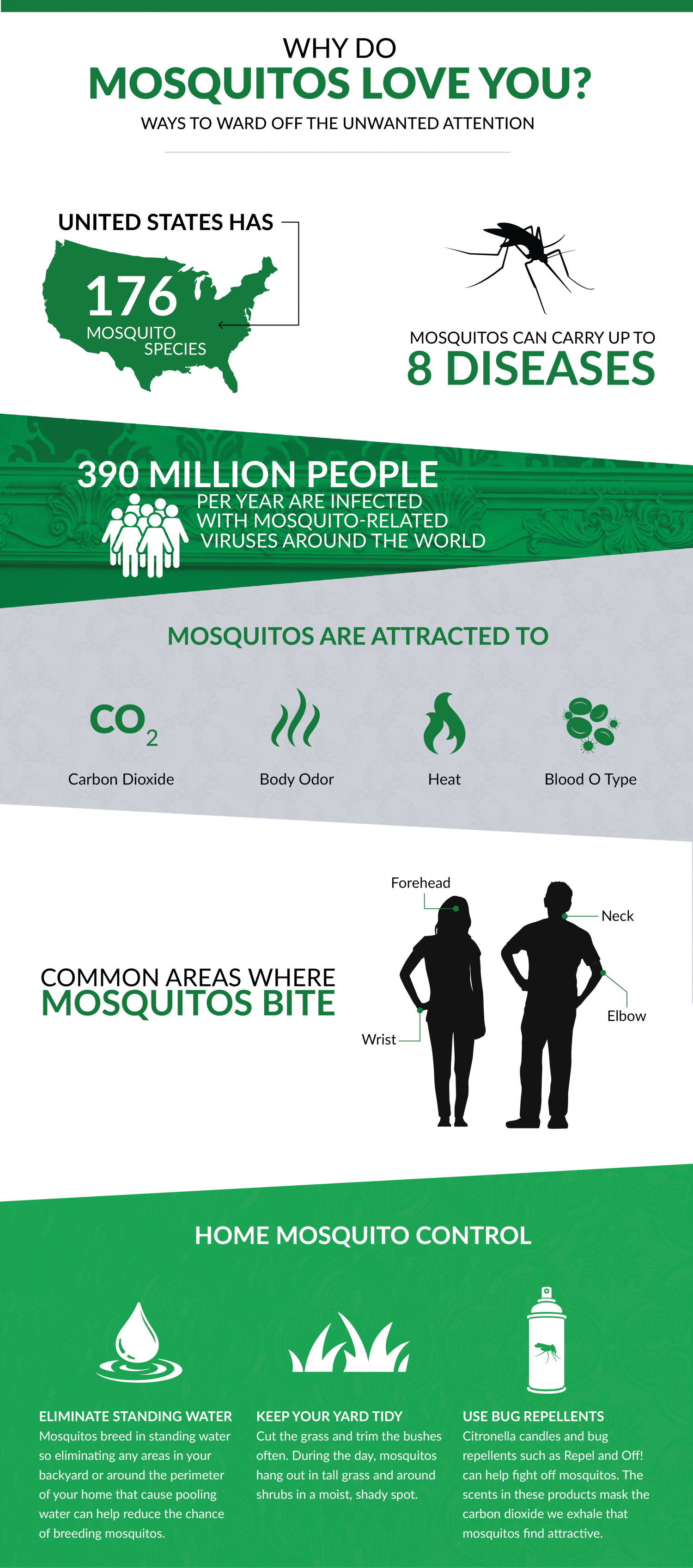 Why Do Mosquitoes Love You? Infographic