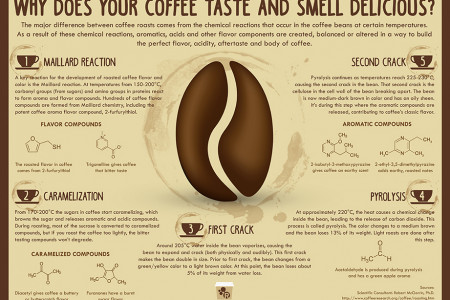 Why Does Your Coffee Smell and Taste So Delicious? Infographic