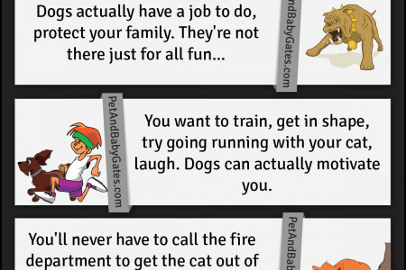 Why Get A Dog Over A Cat Infographic
