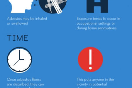 Why Hiring the Pros for Asbestos Removal Is a Must  Infographic