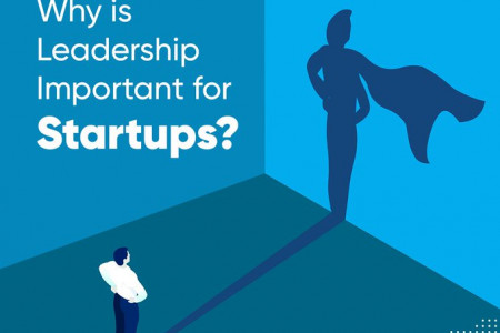 Why is Leadership Important for Startups? Infographic