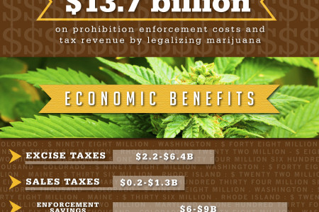 Why Marijuana Legalization is Succeeding Infographic