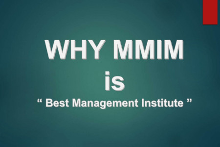 WHY MMIM is the Best Management Institute in North India Infographic