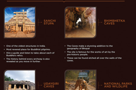 Why Must You Make Madhya Pradesh Your Next Travelling Destination Infographic