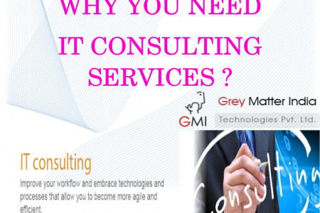 Why Organization will require IT consulting in 2014 Infographic