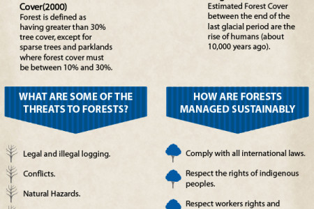 Why Preserve Forest And Plant Trees – An Infographic Infographic
