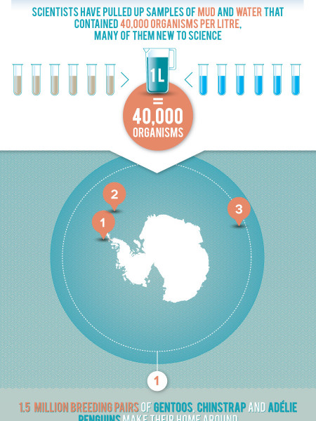 WHY PROTECT ANTARCTICA'S OCEAN? Infographic