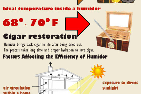 Why Purchase A Humidor for Your Cigar Infographic