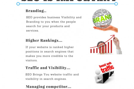 Why SEO Is Important Infographic