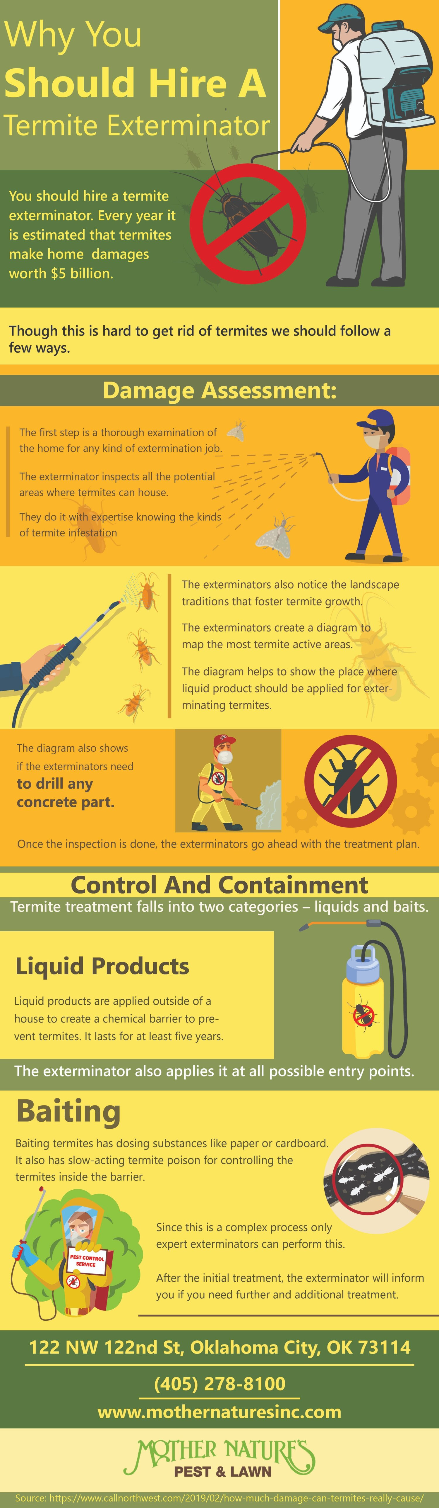 Why Should Hire A Termite Exterminator Infographic