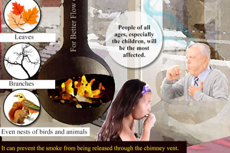 Why Should You Clean Your Chimney Regularly Infographic