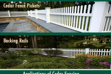 Why to Consider Cedar Fencing? Infographic