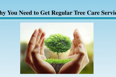 Why You Need to Get Regular Tree Care Services Infographic