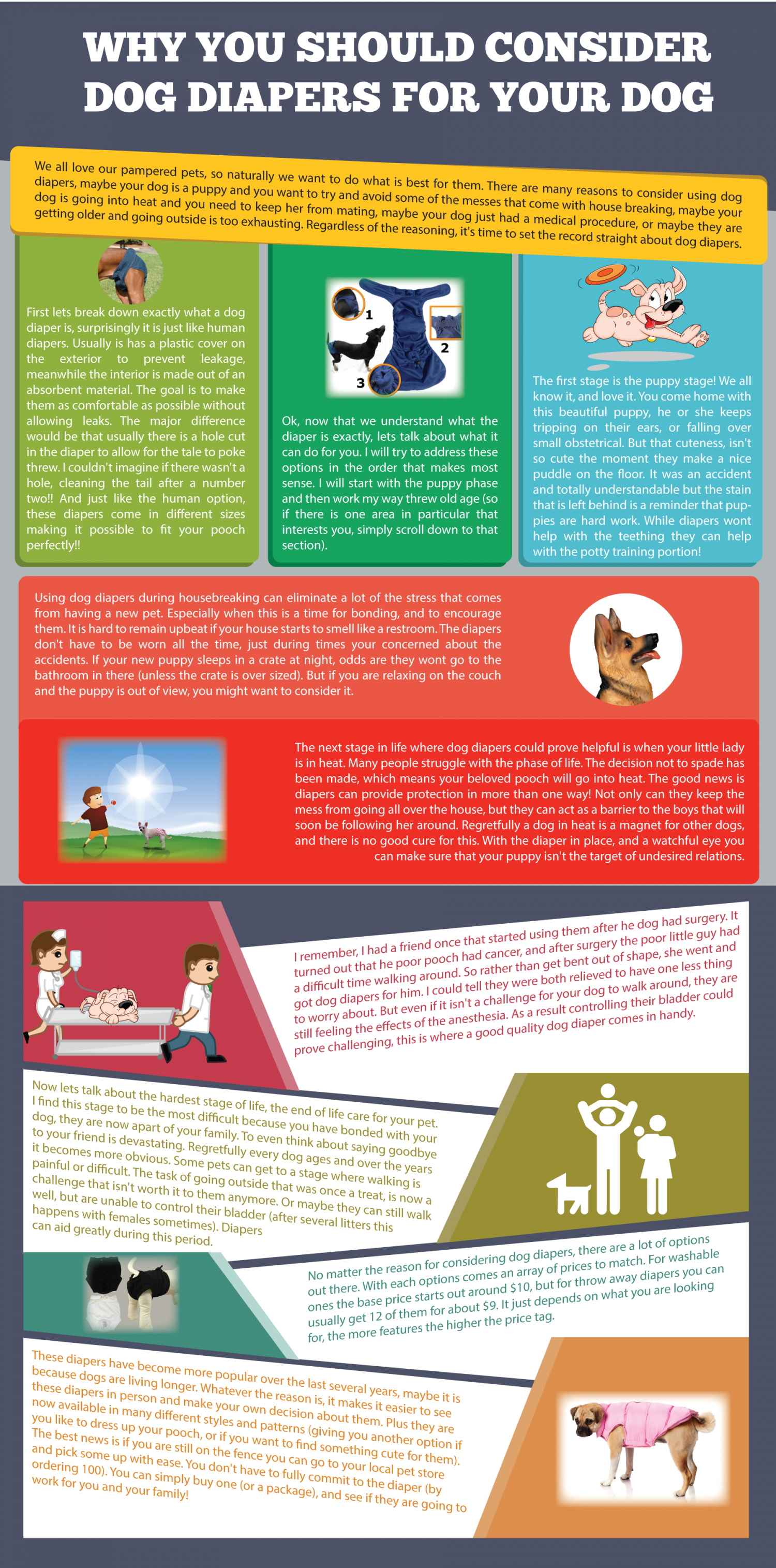 Why You Should Consider Dog Diapers For Your Dog Infographic