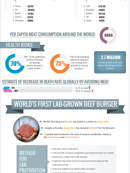 Why's and How's of Artificial Meat Infographic