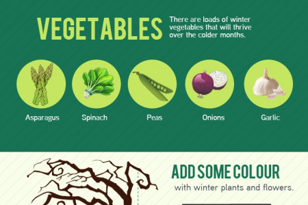 Winter Gardening Tips Infographic