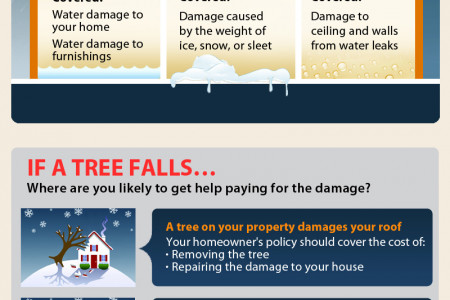 Winter Storms: Are You Covered?  Infographic