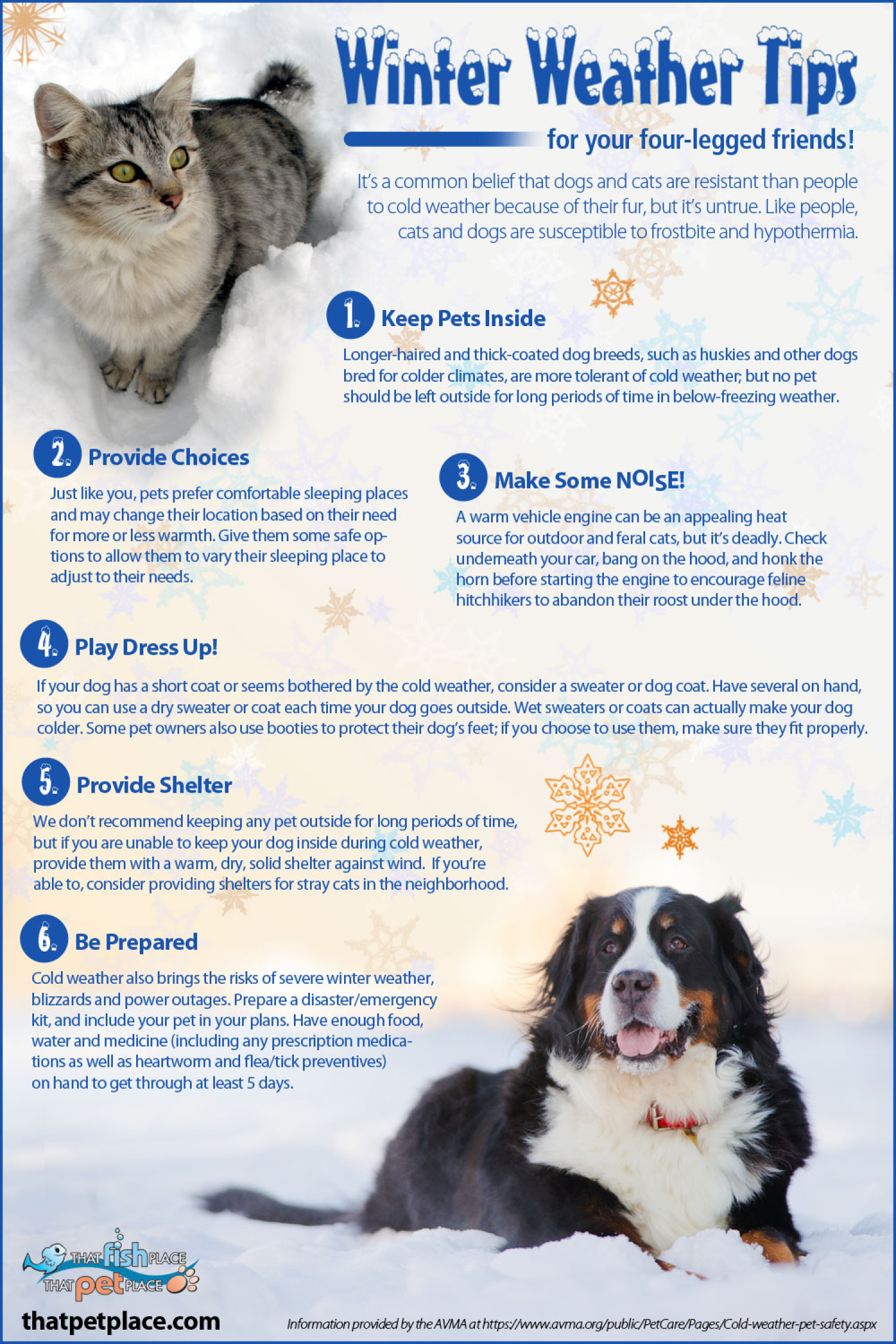Winter Weather Tips for Pets Infographic