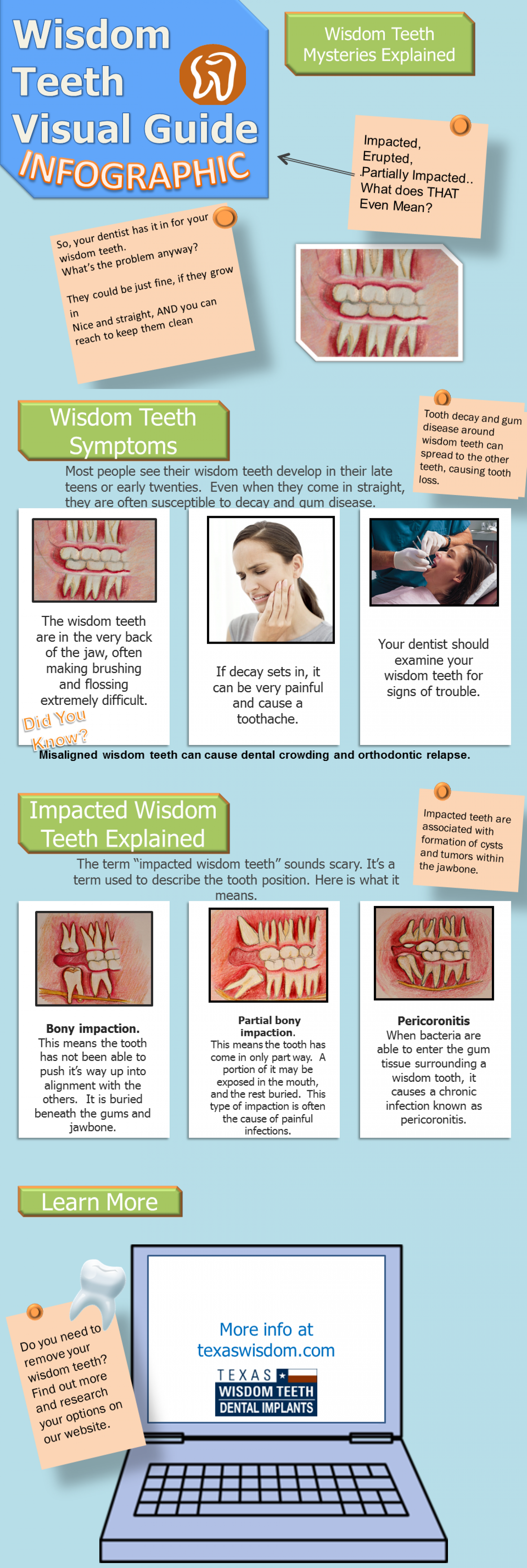 Wisdom Teeth Visual Guide Infographic