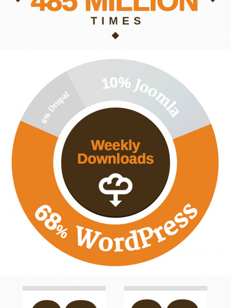 WordPress in Numbers Infographic 2013 Infographic