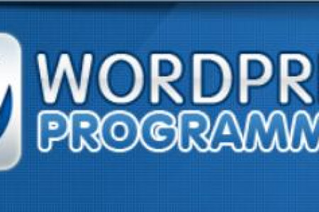 Wordpress plugin developer India  Infographic