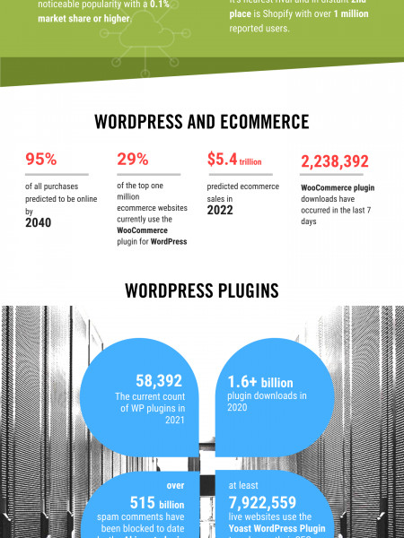 Wordpress The Most Popular Cms In The World Infographic
