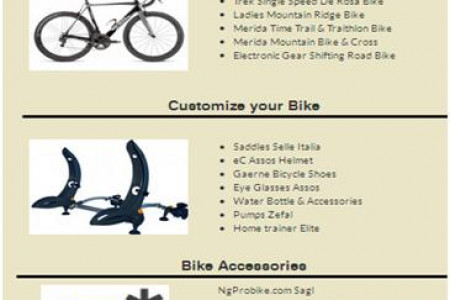 World Best Bicycle Component Manufacturers Infographic