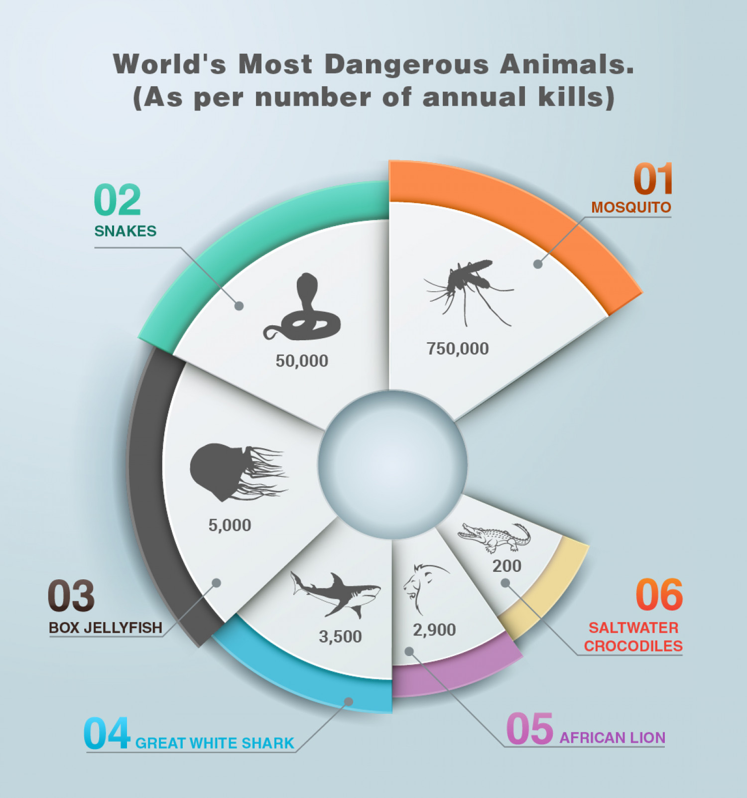 World's Most Dangerous Animals Infographic