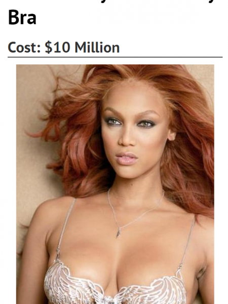 Worlds Most Expensive Bras Infographic