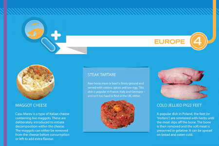 World's Weirdest Foods Infographic