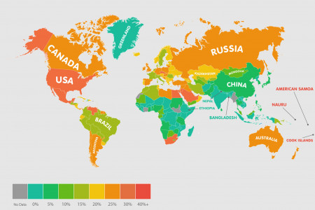Worldwide Obesity Rates Infographic