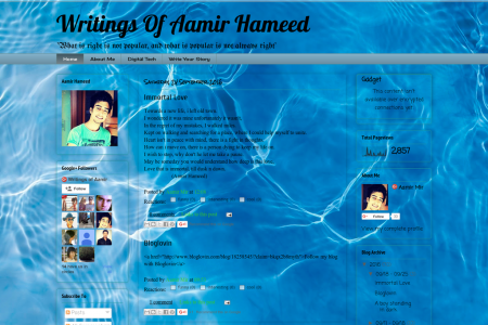 Writings Of Aamir Hameed Infographic