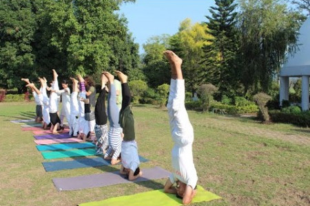 Yoga Teacher Training in Rishikesh Infographic