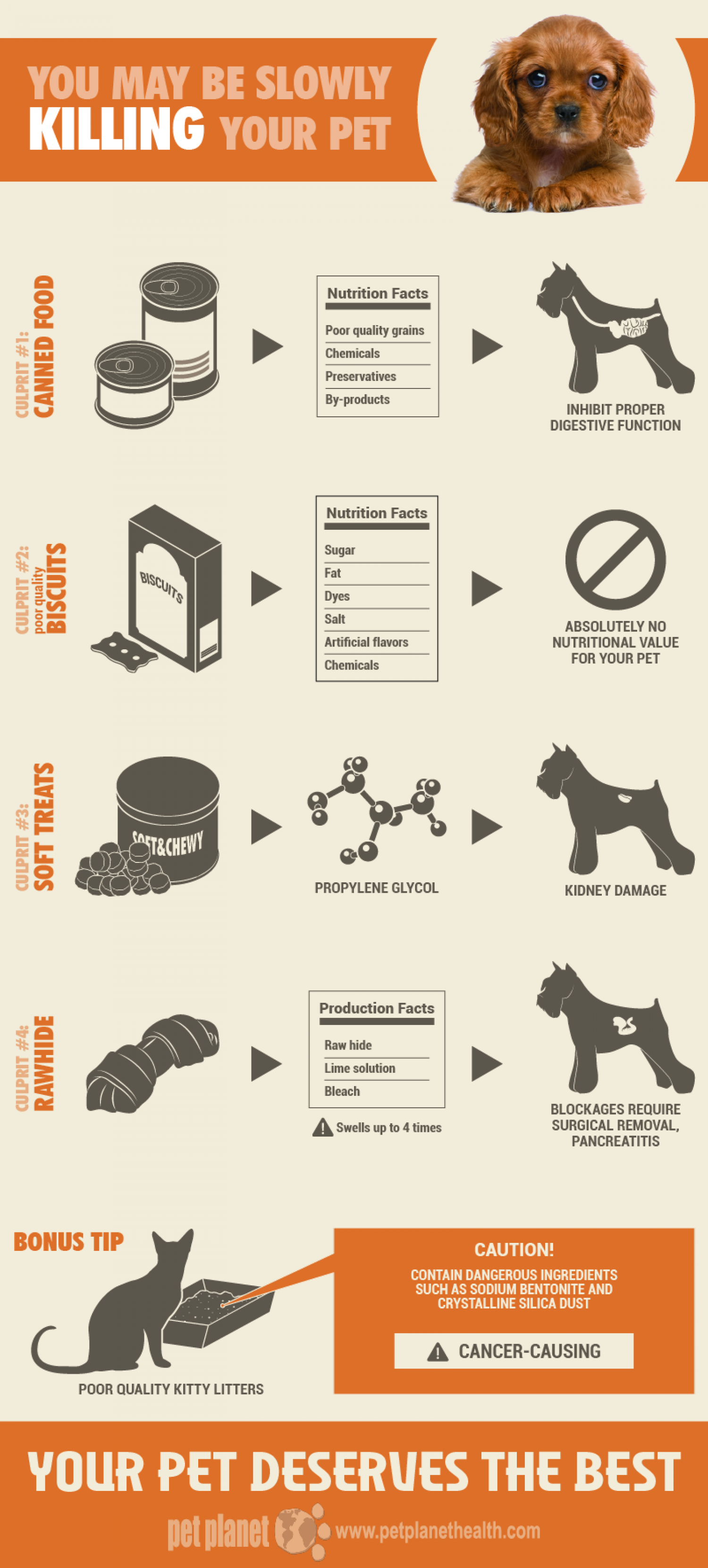 You May Be Slowly Killing Your Pet Infographic