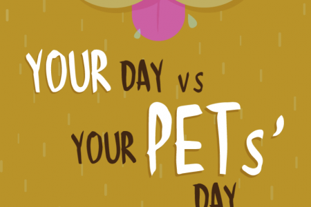 Your Day vs Your Pets' Day Infographic