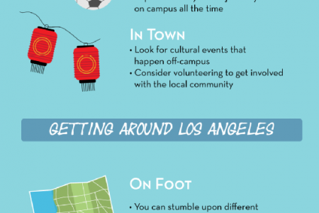 Your Freshman Year Survival Guide! Infographic