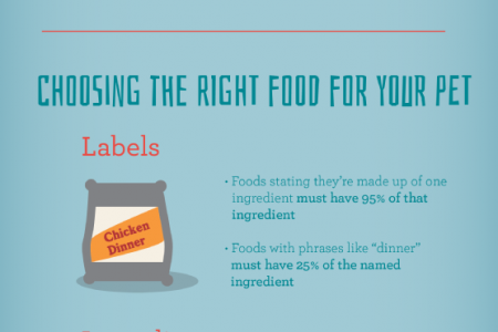 Your Guide to Feeding Your Pet Well Infographic