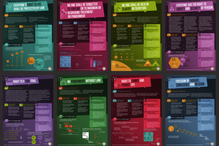 Your human rights Infographic