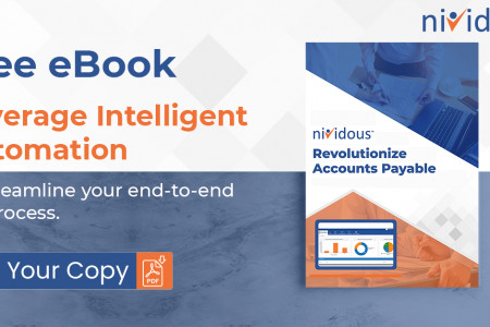 Your Ultimate Guide to AP Transformation (E-book) | Nividous Infographic