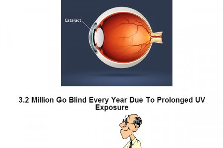 Your Vision Health May Be At Risk Infographic