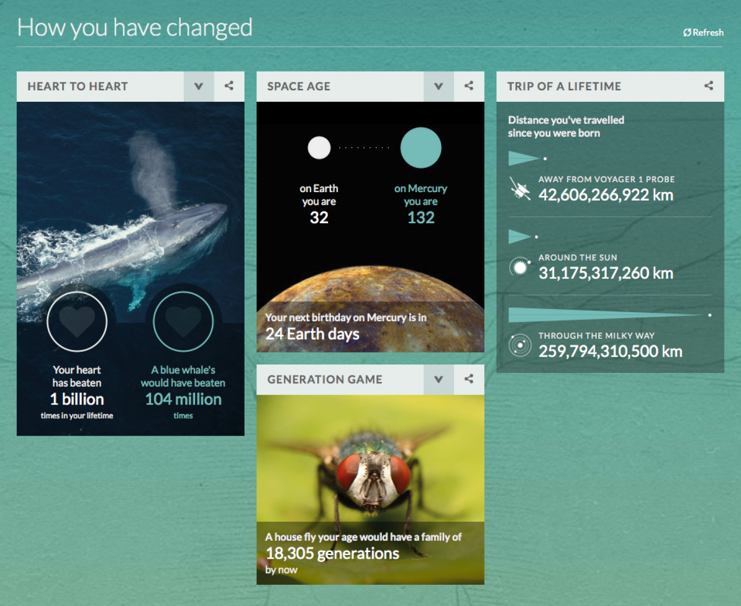 Your life on Earth Infographic